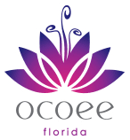 Ocoee Florida Homepage Banner Icon